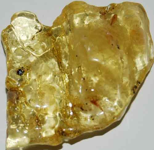 Amber Palm Stone #13