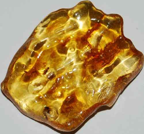 Amber Palm Stone #14