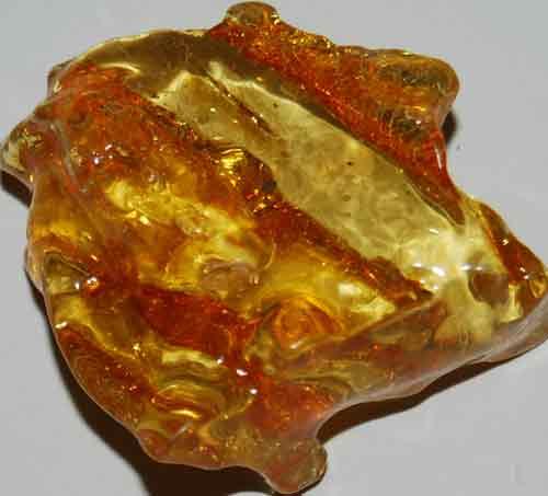 Amber Palm Stone #15
