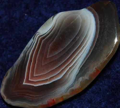 Botswana Agate Slice #14
