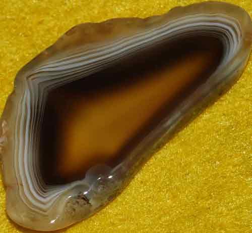 Botswana Agate Slice #8