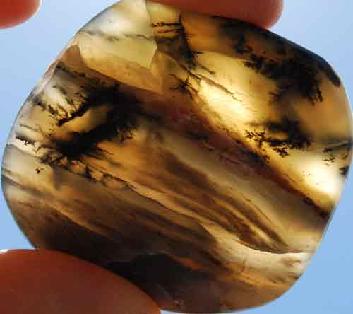 Dendritic Opal Palm Stone #6