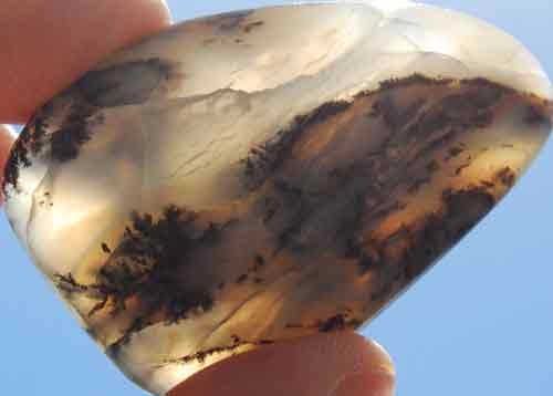 Dendritic Opal Palm Stone #7