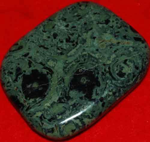 Kambaba Jasper Stromatolite Palm Stone #6