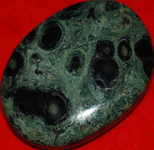 Kambaba Jasper Stromatolite Palm Stone #9