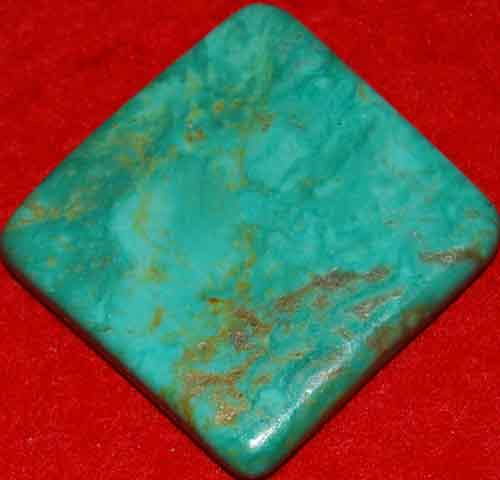 Mexican Green Turquoise Palm Stone #13