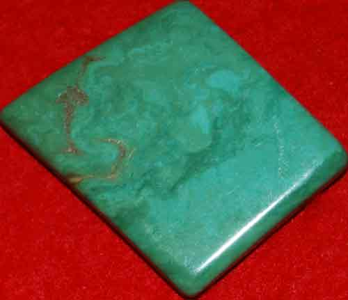 Mexican Green Turquoise Palm Stone #14