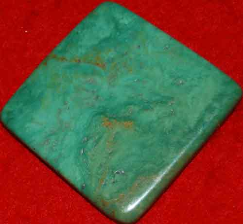 Mexican Green Turquoise Palm Stone #15