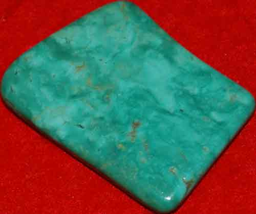 Mexican Green Turquoise Palm Stone #17
