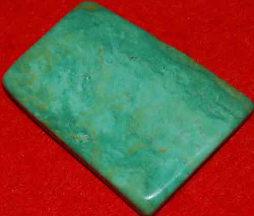 Mexican Green Turquoise Palm Stone #18