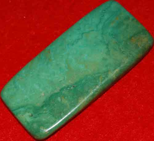 Mexican Green Turquoise Palm Stone #34