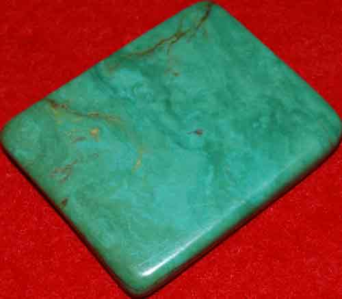 Mexican Green Turquoise Palm Stone #36