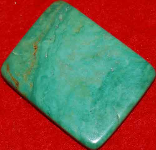 Mexican Green Turquoise Palm Stone #3