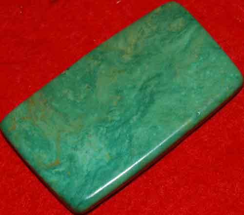 Mexican Green Turquoise Palm Stone #42