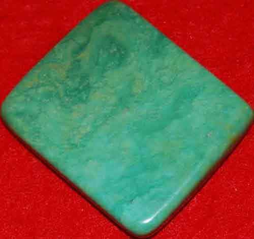Mexican Green Turquoise Palm Stone #4