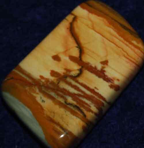 Owyhee Picture Jasper Palm Stone #2