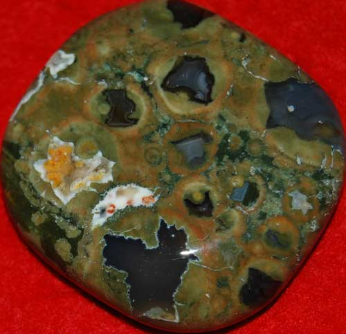 Rainforest Jasper/Rhyolite #31