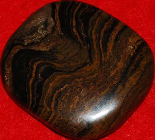 Stromatolite Palm Stone #3