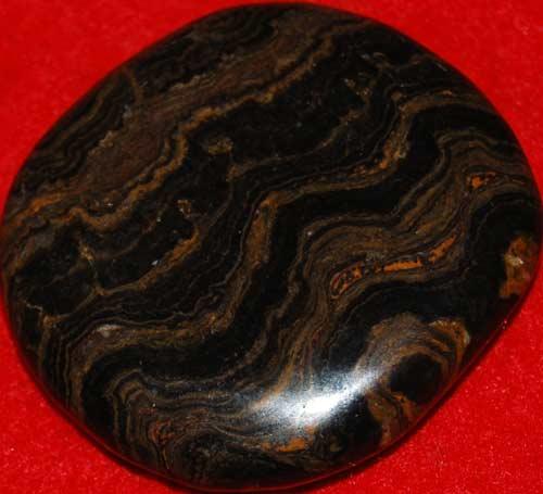 Stromatolite Palm Stone #4