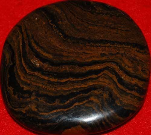 Stromatolite Palm Stone #9