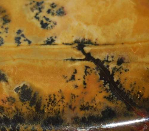 Yellow Feather Jasper Palm Stone #1