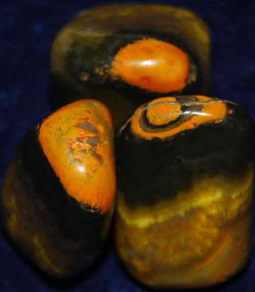 3 Bumble Bee Jasper Tumbled Stones #4