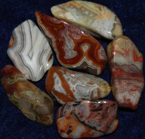 Seven Crazy Lace Agate Tumbled Stones #10