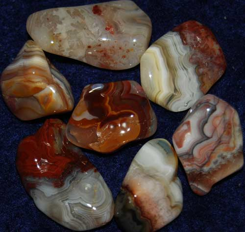 Seven Crazy Lace Agate Tumbled Stones #17