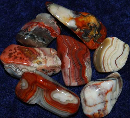 Seven Crazy Lace Agate Tumbled Stones #7
