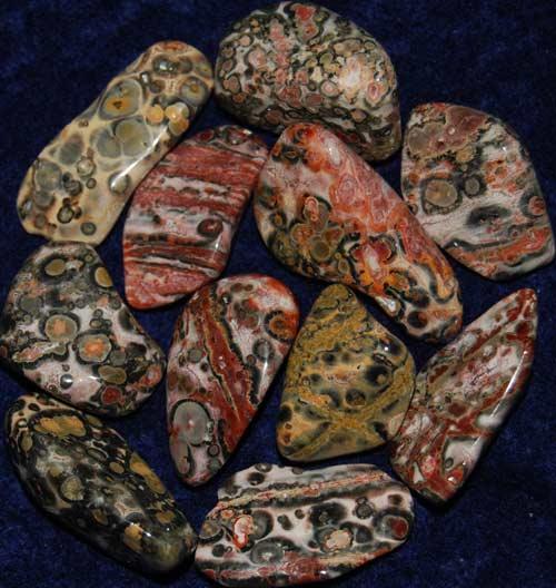11 Leopardskin Rhyolite/Jasper Tumbled Stones #12