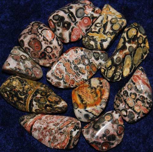 11 Leopardskin Rhyolite/Jasper Tumbled Stones #4