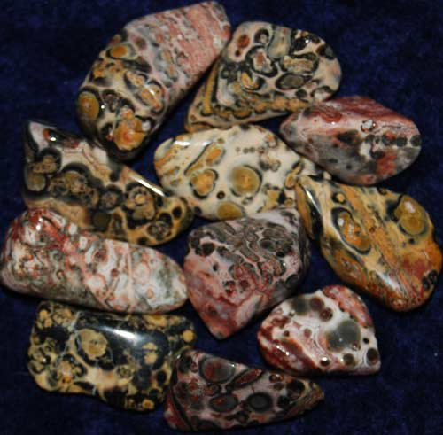 11 Leopardskin Rhyolite/Jasper Tumbled Stones #6