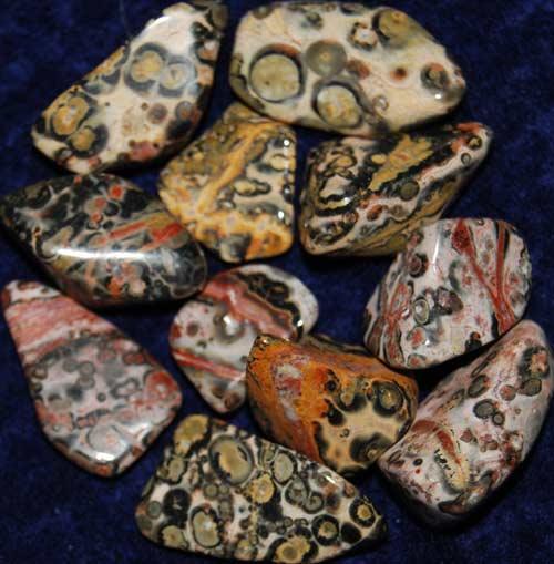 11 Leopardskin Rhyolite/Jasper Tumbled Stones #8