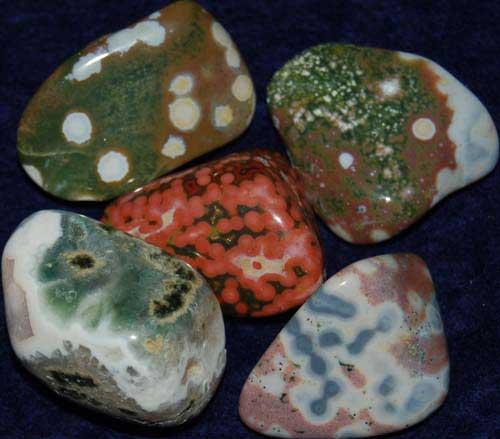 5 Ocean Jasper Tumbled Stones #11