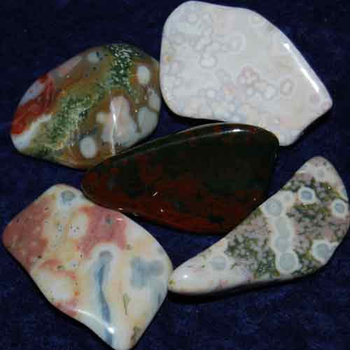 5 Ocean Jasper Tumbled Stones #15