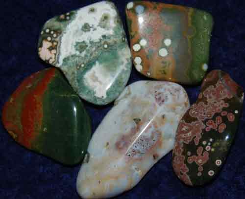 5 Ocean Jasper Tumbled Stones #16