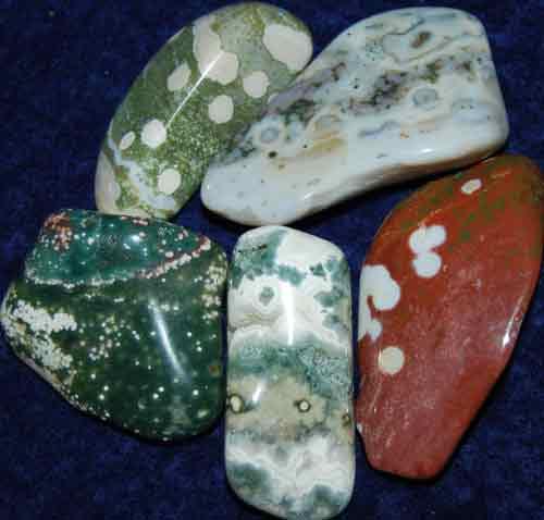 5 Ocean Jasper Tumbled Stones #18