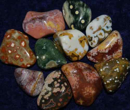 11 Ocean Jasper Tumbled Stones #1