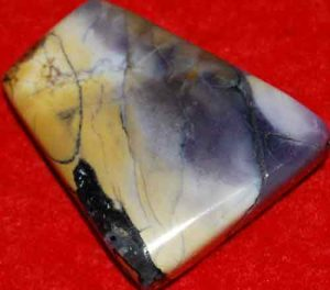 Tiffany Stone Palm Stone Slice #10