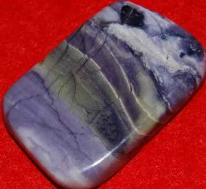 Tiffany Stone Palm Stone Slice #8